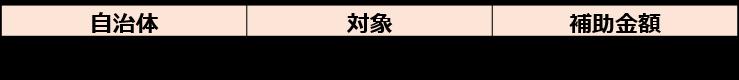 補助金の活用(自治体)